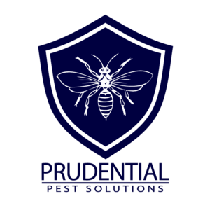 Commercial Pest Control Chester County