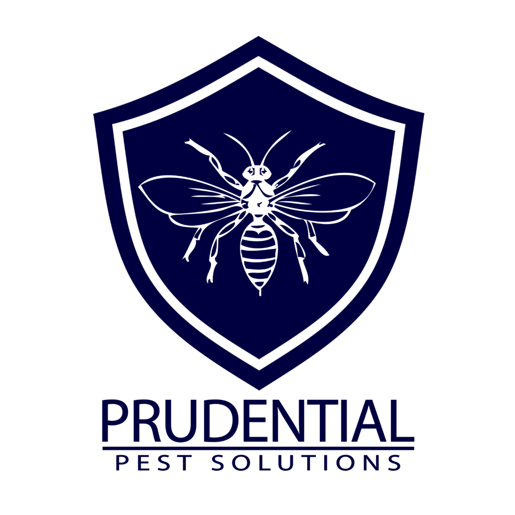 Bed Bug Treatments Chester County