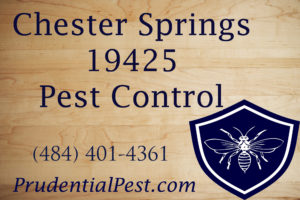 Chester Springs Pest Control