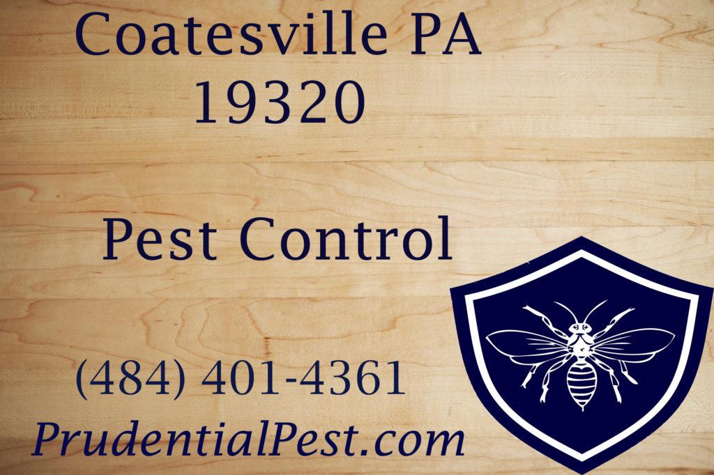 Coatesville PA Pest Control