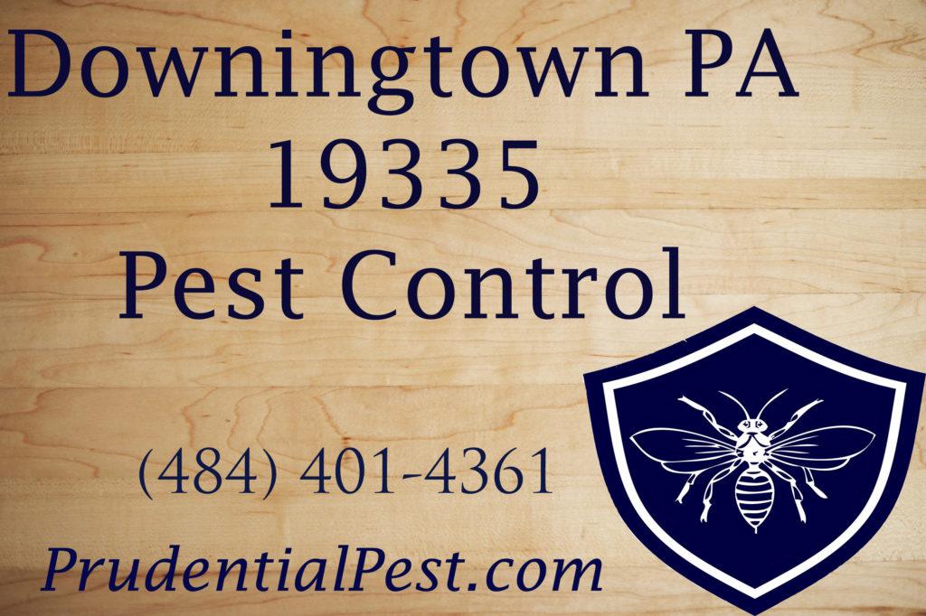 Downingtown PA Pest Control