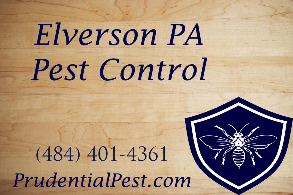 Elverson Pest Control