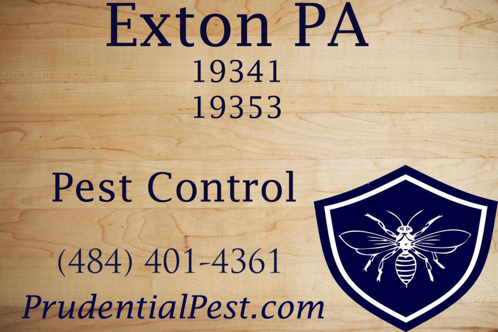 Exton PA Pest Control