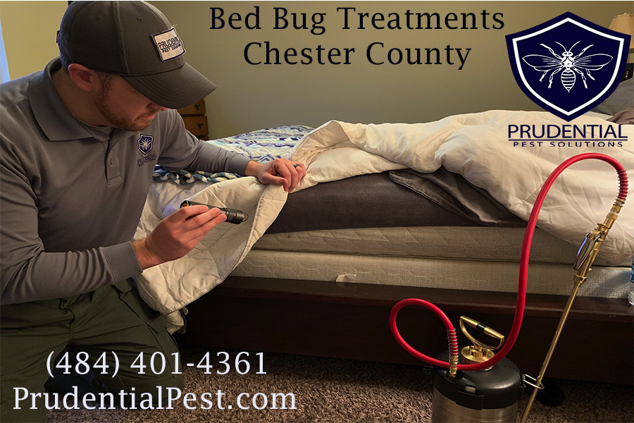 Bed Bug Treatments West Chester
