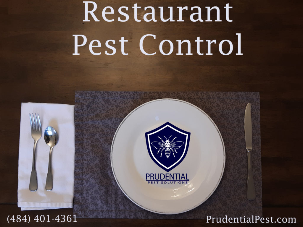 Restuarant Pest Control