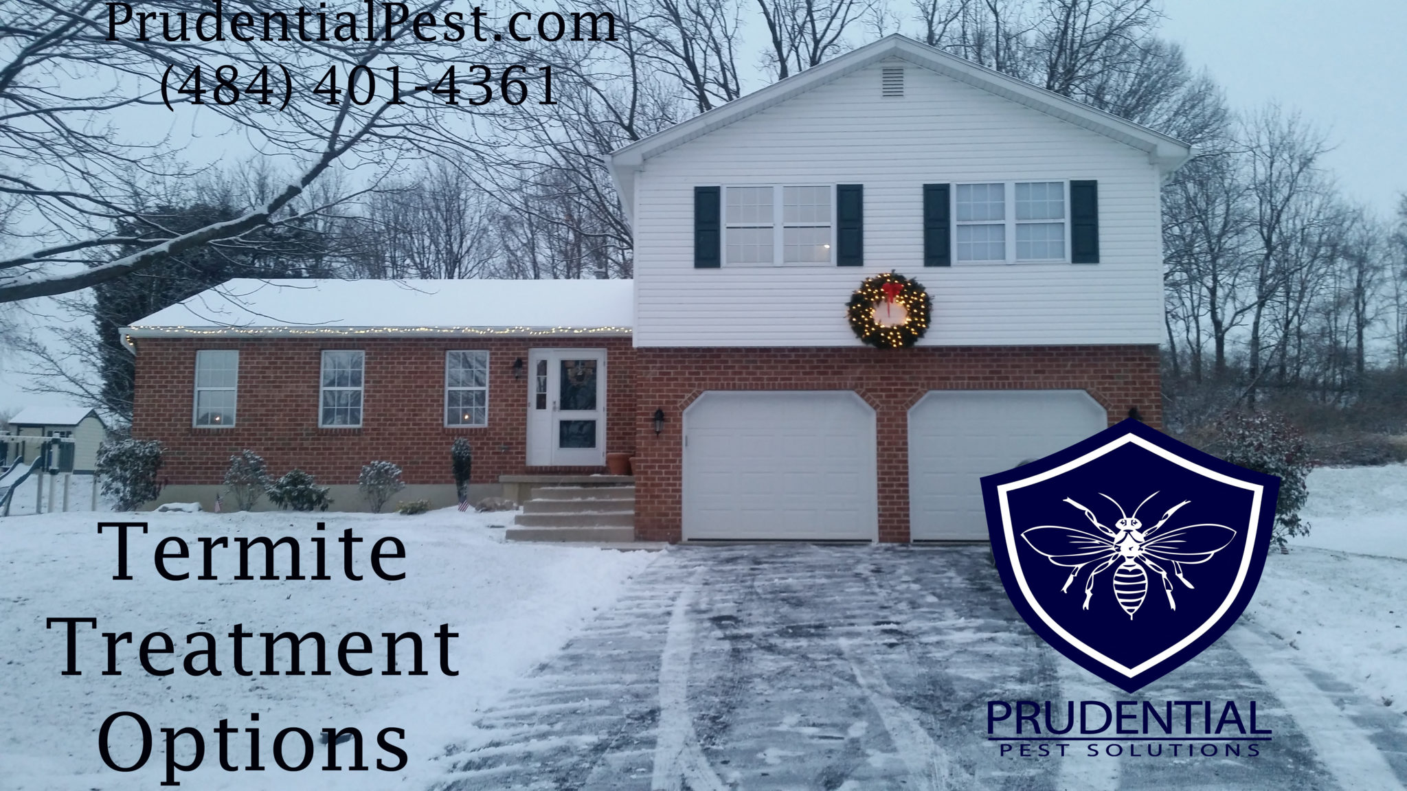Termite Treatment Options Chester County