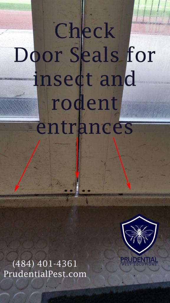 Downingtown Pest Control
