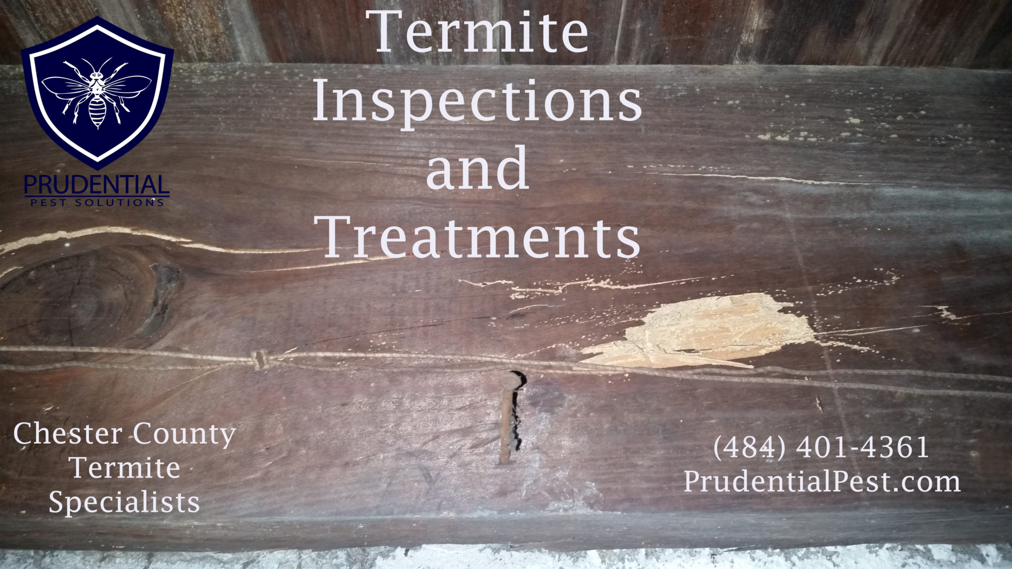 Termite Treatments Chester County