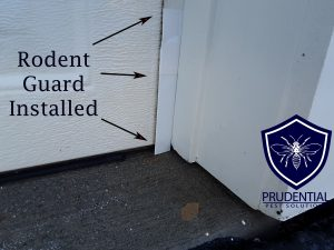 Rodent Guard Installed on Garage