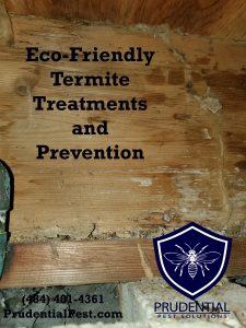 eco friendly termite control