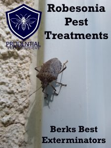 robesonia pest treatments
