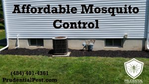 affordable mosquito control