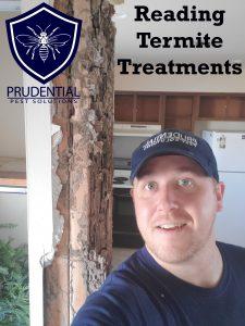 reading termite treatments
