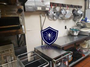 restaurant exterminator services