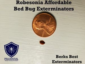 robesonia affordable bed bug extermintors