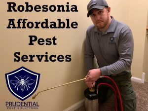 Robesonia affordable pest services
