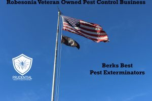 robesonia pest business