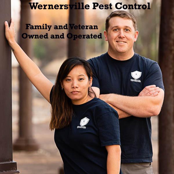 wernersville pest control