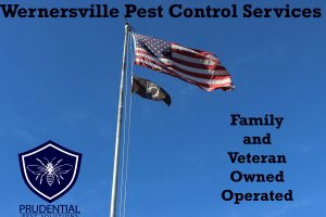 wernersville pest control services