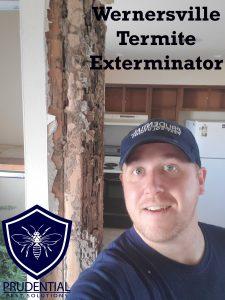 wernersville termite exterminator