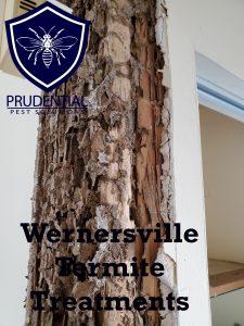 wernersville termite treatments