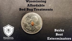 wyomissing affordable bed bug treatments