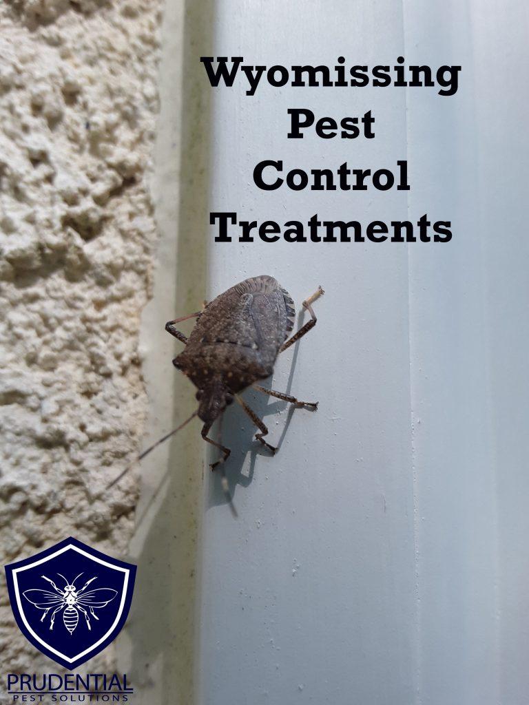 wyomissing pest control treatments