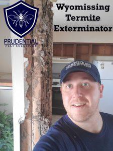 wyomissing termite exterminator