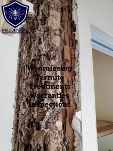 wyomissing termite treatments