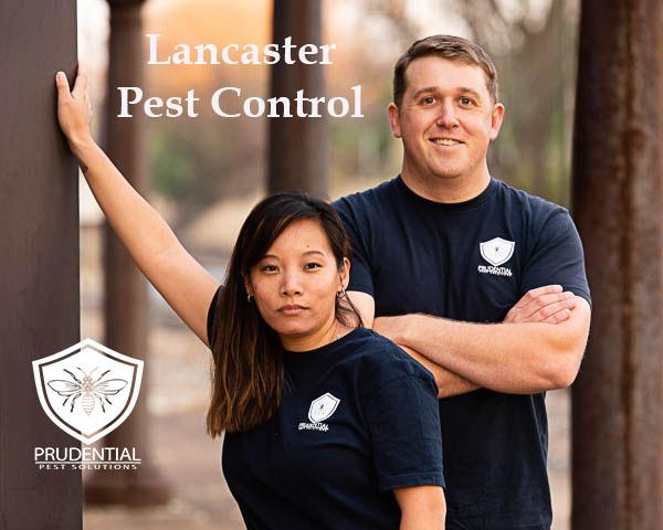 Lancaster Pest Control