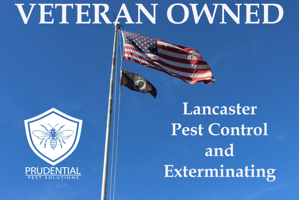 Lancaster Pest Control and Exterminating Company