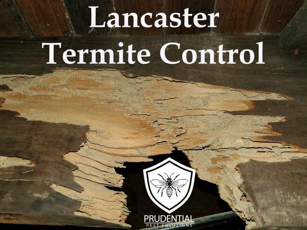 Lancaster Termite Control