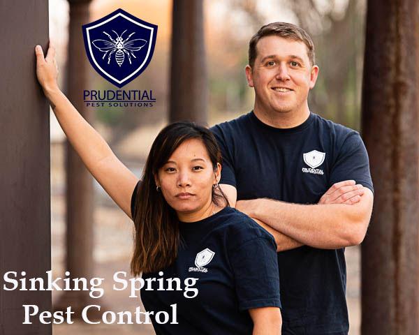 Sinking Spring Pest Control