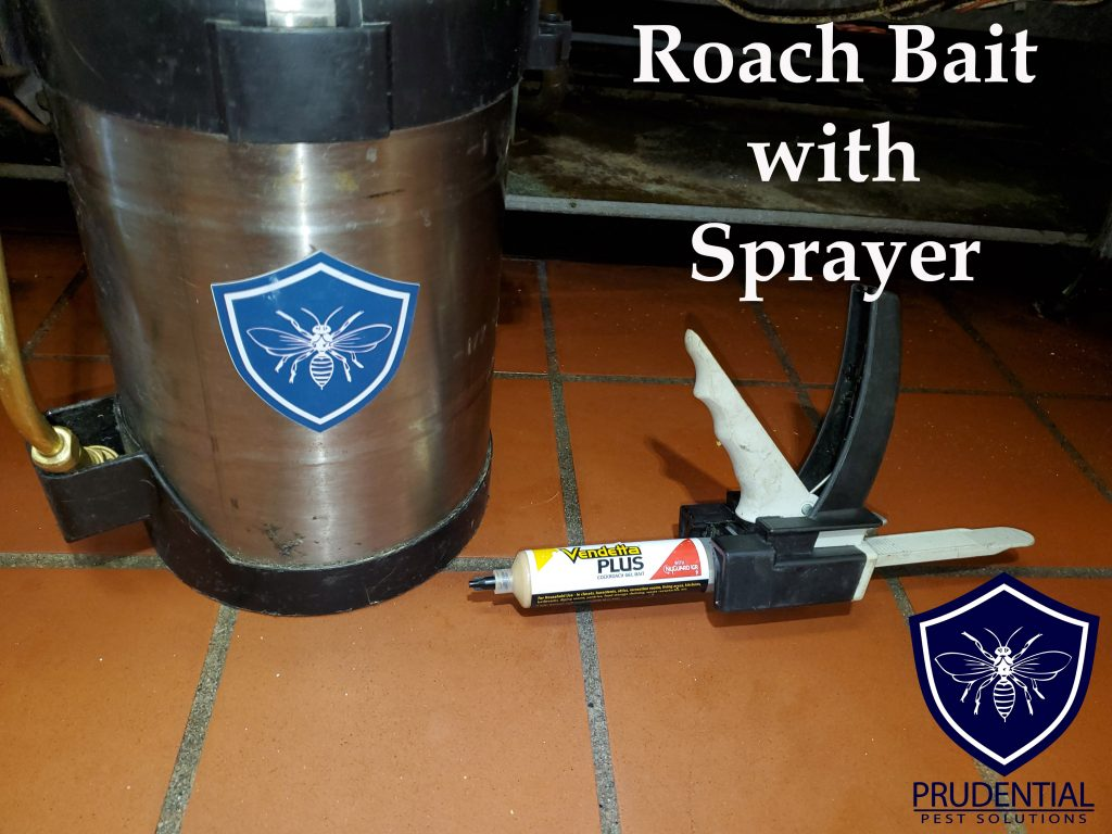 roach bait with sprayer