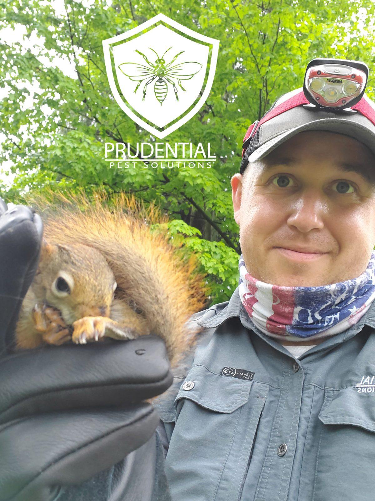 squirrel experts